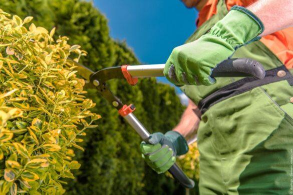 Innovative Geräte für Garten- und Landschaftsbau